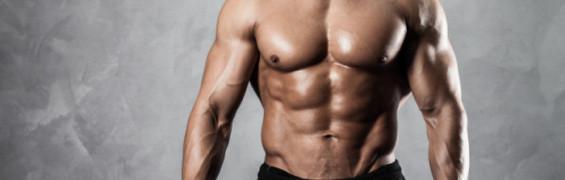 TQ - Muscle Strength