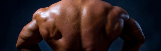 TQ Muscle & Increasing Endurance